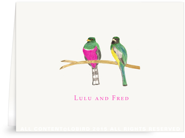 Bird Pair - green pink