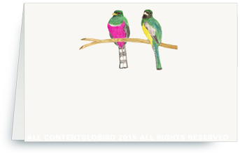 bird pair - pink and green
