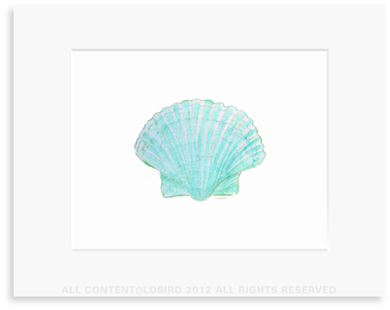 Aqua Green Scallop Sea Shell