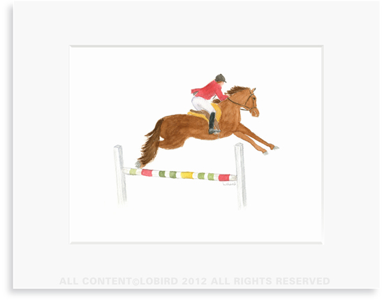 Equestrian-Horse Jumping