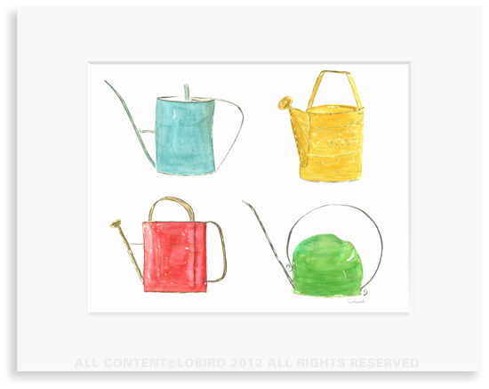 Vintage Watering Can Collection